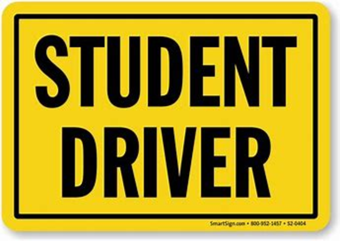Student Drive Car Magnets