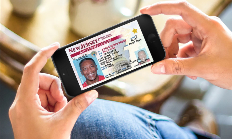 Smart phone driver license and registration